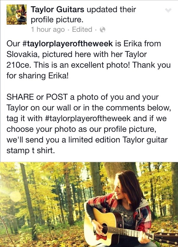 taylor-guitar