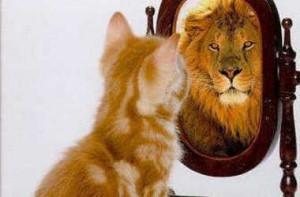 kitten-looking-in-mirror-seeing-a-lion_crop380w-300x197
